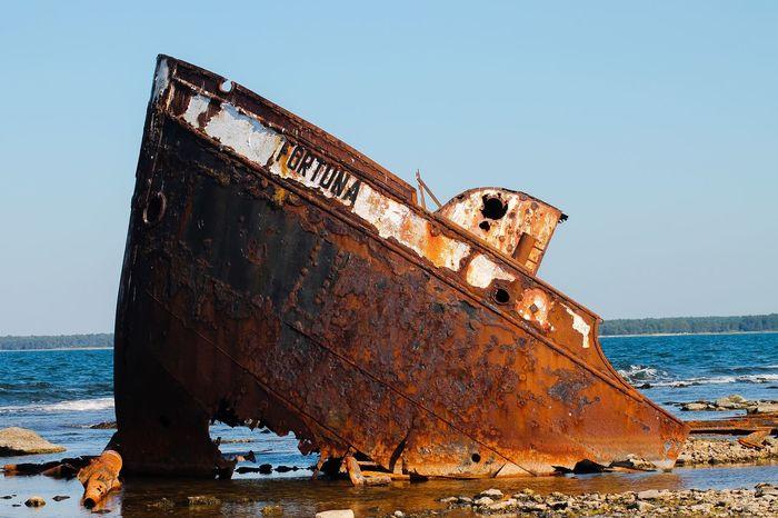 Wreck Sea Boatwreck Gotland, Sweden Fårö, Norsholmen Rusty Ship Wreck Fortuna Old Ship Summer Seaside Sea And Sky No People History Through The Lens  Landscape Landscape_photography