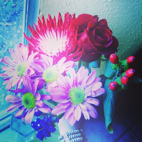 The flowers that my wonderful boyfriend gave me for our 1month aniversary!♥ Flowers Ilovetracey Ilovemybabe Bestboyfriendever bestgiftintheworld ana&tracey4ever red purple violet white 5.19.13forever♥