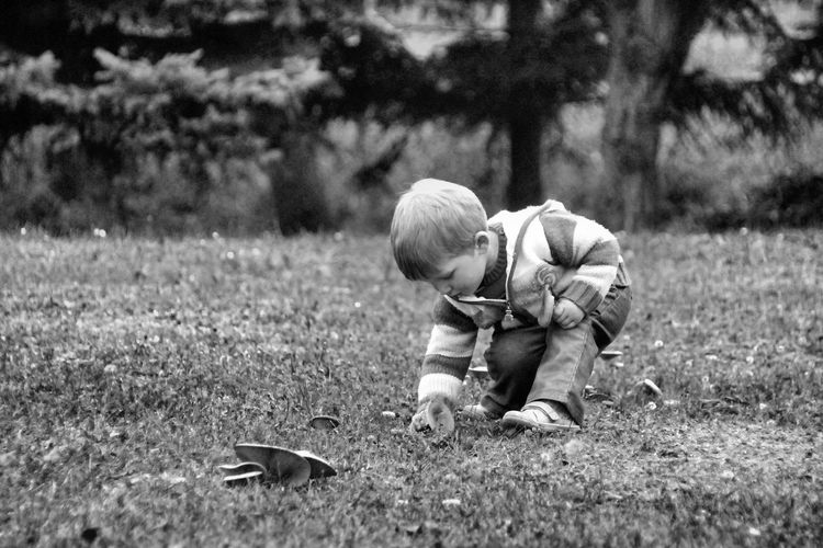 Boy Picking Fungus On Field