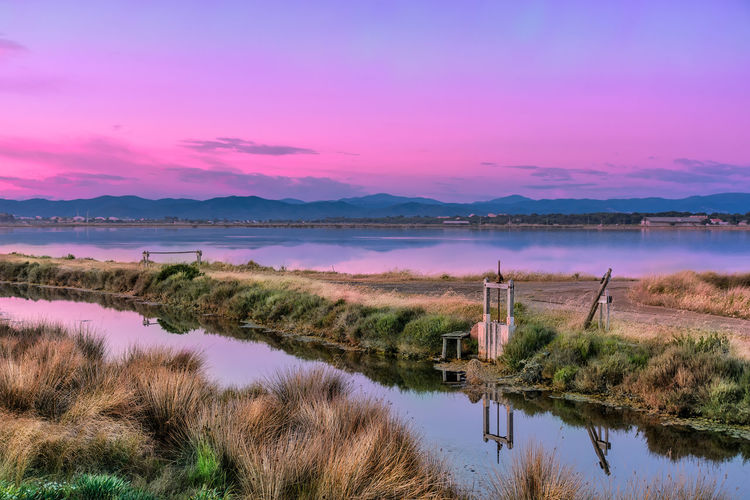 Les Salins-d'Hyères, blue hour shot Almanarre Beach Beauty In Nature Blue Hour Day Grass Lake Landscape Landscape_Collection Light And Shadow Mediterranean  Nature No People Outdoors Pink Purple Reflection Reflection Scenics Sky South Of France Sunset The Great Outdoors - 2017 EyeEm Awards Tourist Destination Tranquility Water