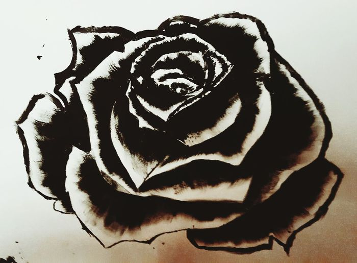 My Painting Roses
