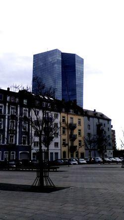 Taking Photos EZB Frankfurt