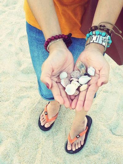 short gateway @ Pantai Teluk Ketapang, Terengganu Beach Vacay2014 Seashells