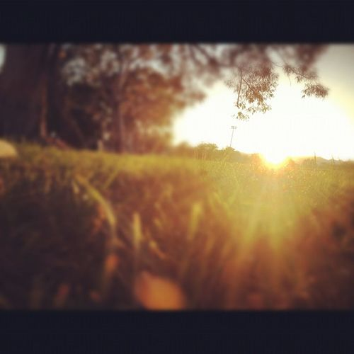 Mothers Day ending! With the grandma, mom, and cousin. Evening Sunset Grass Niceday bright sunlight sun