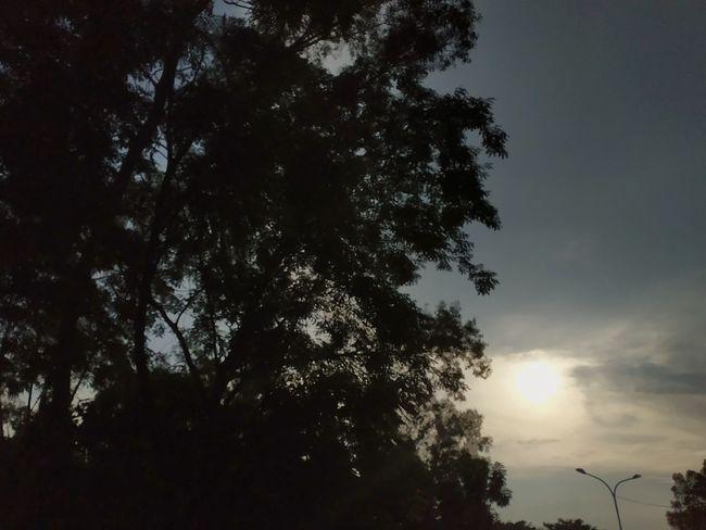 Waiting You Sunset Senja  Kepri Batam Langitsenja Kepulauanriau Welcometobatam Sekupang Indonesia Photography  Explorekepulauanriau Tebinglangitbatam INDONESIA Explorekepri Explorebatam Exploreindonesia SORE #waiting #sky #streetphotography Beautifulsky Sun