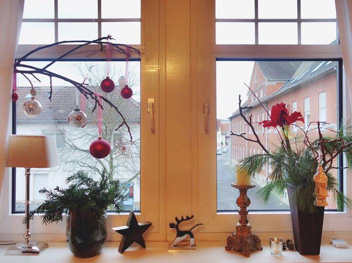 Decoration Christmas Decoration Christmas Window Street Lovely Cozy Lorsch Germany Iamonmywaytoeverywhere