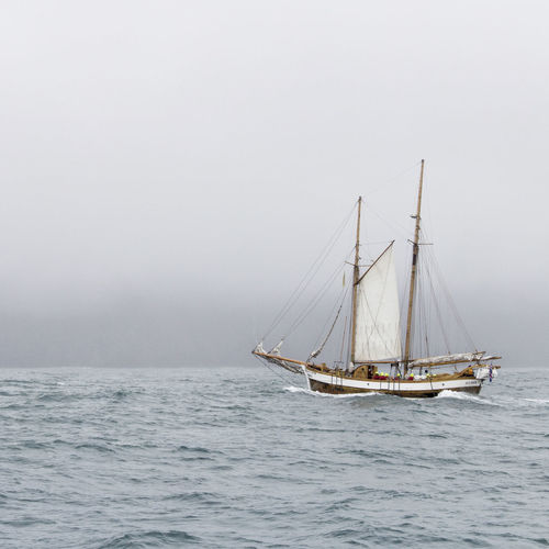 Beauty In Nature Day EyeEmNewHere Fog Foggy Grey Horizon Over Water Mast Mode Of Transport Nature Nautical Vessel No People Outdoors Sailboat Sailing Sailing Ship Sea Sky Tall Ship Transportation Travel Water Waterfront Whale Watching Live For The Story