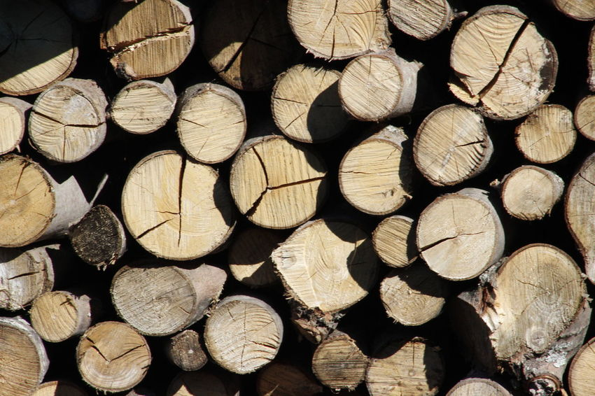 Abundance Arrangement Backgrounds Circle Deforestation Environment Environmental Issues Firewood Forestry Industry Fossil Fuel Fuel And Power Generation Full Frame Heap Large Group Of Objects Log Lumber Industry Order Pile Stack Timber Wood Wood - Material Wooden WoodLand Woodpile