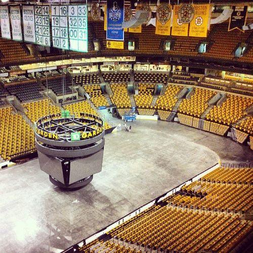 Bruins.