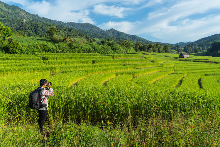 Photographer Land Agriculture Plant Landscape Scenics - Nature Growth Field Rural Scene Beauty In Nature Environment Adult Occupation Farm Green Color Mountain Nature Crop  Men Real People Farmer Outdoors Paddyfield Sky Day