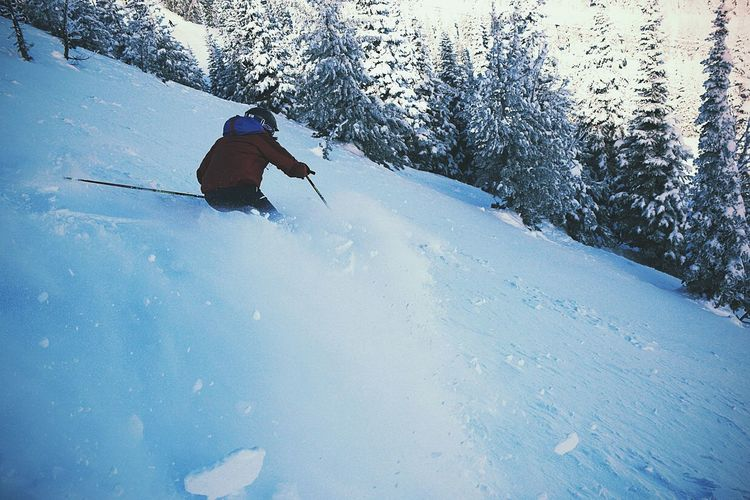 Snow Sports Ski