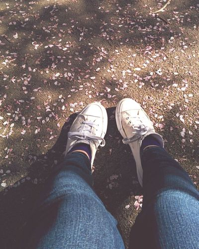 spring Sakura Cherry Blossoms Cherry Blossom Petals On The Ground Sneakers White Sneakers JeansDay Faintly Colors - 仄か Softness Warm Atmosphere Feet Feet On The Ground Shoes Two Is Better Than One