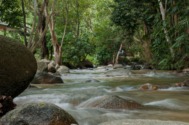Ipoh Ulu Chepor Travel Scenics No People Outdoors Nature Forest Waterfall Beauty In Nature Background Spa