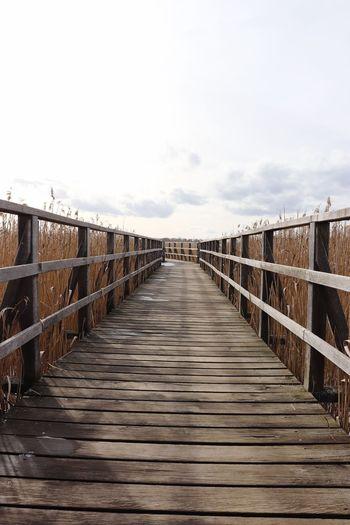 Wooden footbridge on boardwalk against sky