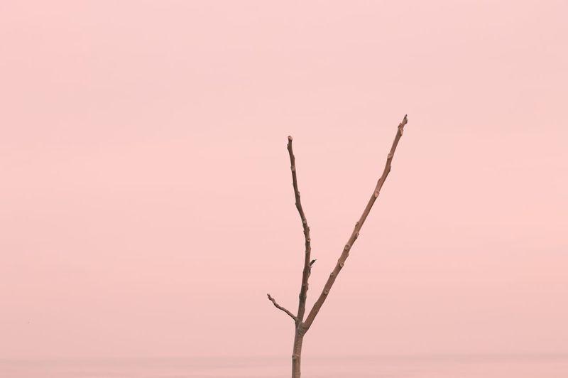 Landscapes in