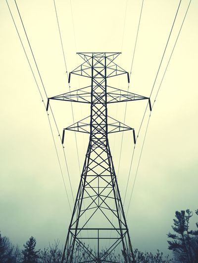 Great big electricity monster Pylon Electricity Pylon Pylonography Winter Wintertime Mist Pines Ombre Cloudy Cloudy Day Monster Energy My Monsters Are Friendly My Favorite Photo