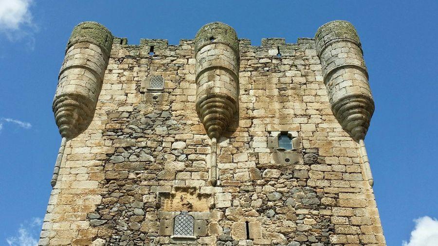 Castillo De Monleon