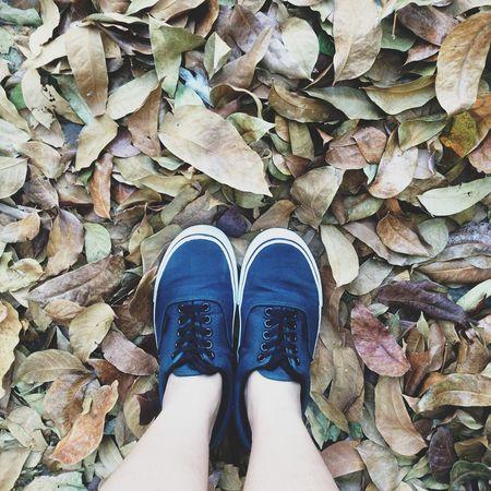 The Essence Of Summer The Great Outdoors - 2016 EyeEm Awards Shoes Vans Vans Off The Wall Green EyeEm Best Shots Eyeem Philippines EyeEm Gallery EyeEm Cagayan De Oro Camiguin Feet Vscocam VSCO Eyeem CDO Out Of The Box