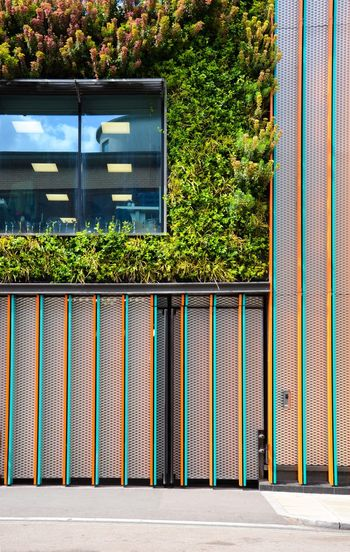 Multi colored building with greenery in city