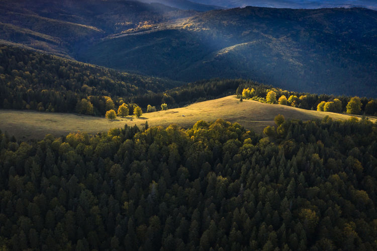 Last ray of light over the forest near my town. Aerial Shot Drone  EyeEmNewHere Trees Aerial Aerial View Beauty In Nature Day Drone Photography Forest High Angle View Idyllic Landscape Mountain Mountain Range Nature No People Non-urban Scene Outdoors Plant Scenics - Nature Sunset Tranquility Tree Warm Liight
