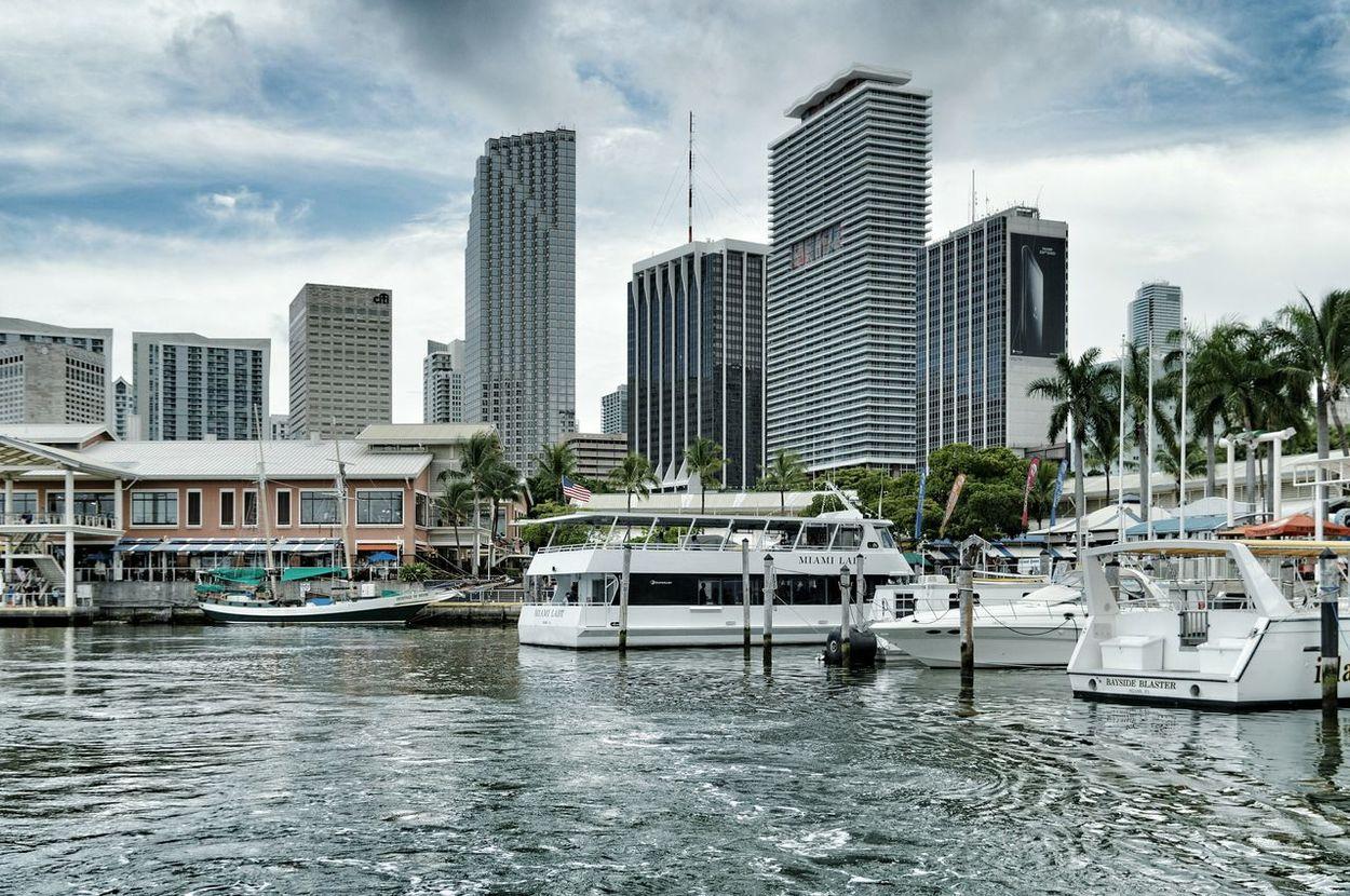 Cityscapes Miami, Florida