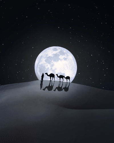 A walk in the night. Desert Lonely Night Astronomy Space Star - Space Galaxy Moon Discovery Friendship Moon Surface Sky Planetary Moon Half Moon Crescent Astronaut Space Suit Eclipse Full Moon Moonlight Rocket Space Travel Vehicle Solar Eclipse Sky Only Astrology Space Exploration Space Helmet Solar System Milky Way Space And Astronomy