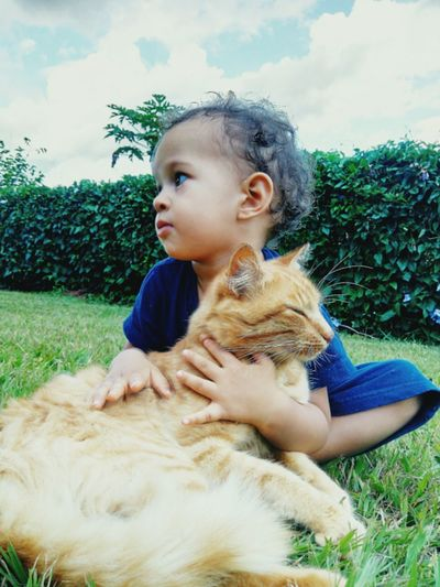 Child Childhood One Boy Only Children Only Nature Males  People Day Close-up Outdoors Sky Cat Cats 🐱 Grass Grass Area Grass Family Grass Photography Love Lovely The Portraitist - 2017 EyeEm Awards Pet Portraits