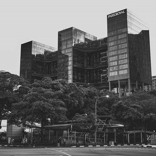 The Park Royal. Cool design on this hotel Architecture Sonyrx100iv Blackandwhitephoto Lightroom Singapore