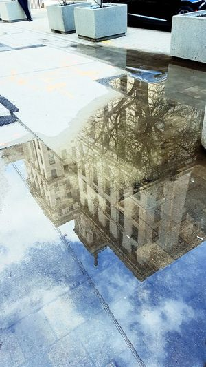 reflecting puddles Clouds And Sky Blue Sky Toronto Downtown The 6ix Mirror Reflection Mirror Reflections In The Water Reflection Canada Life Canada Life Building Beacon Building Puddle Water Sky Building Historic Office Building