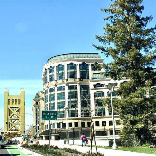 City Sacramento The Week on EyeEm Tower Bridge  Architecture Background Backgrounds Bridge Bridge - Man Made Structure Building Building Exterior Built Structure City City Life Clear Sky Day Growth Low Angle View Men Outdoors People Real People Sky Tree Urban