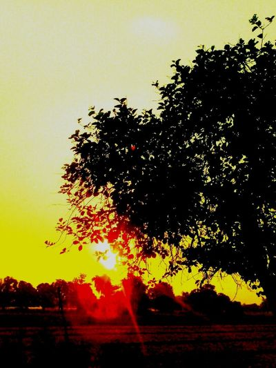 Good Morning! Sunrays Hollidays In India Instapic