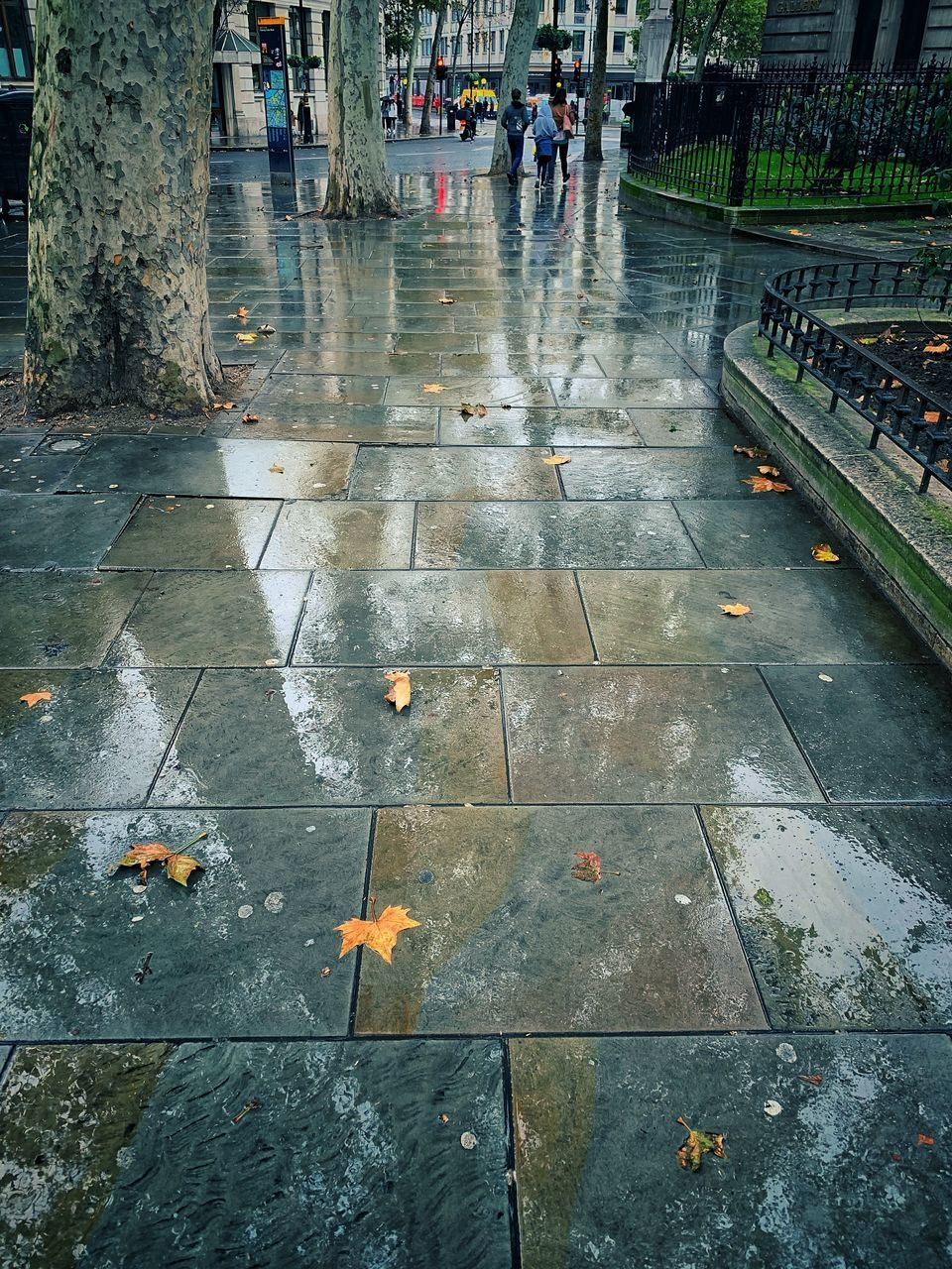 rain, wet, city, group of people, real people, day, architecture, the way forward, street, direction, water, walking, rainy season, incidental people, transportation, footpath, outdoors, lifestyles, paving stone