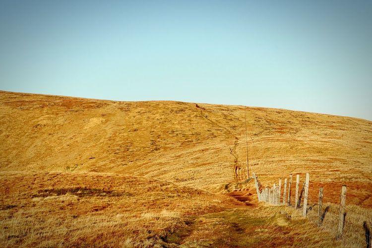 Fence Scotland