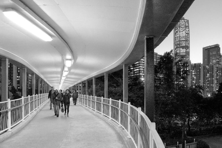 Architecture Built Structure Walking Bridge - Man Made Structure City Indoors  Modern