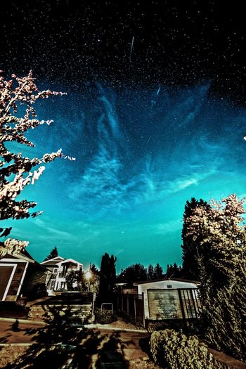 EyeEm Best Shots From My Point Of View House Building Exterior Built Structure Architecture Sky Tree Low Angle View Outdoors No People Night Nature Beauty In Nature Astronomy HUAWEI Photo Award: After Dark
