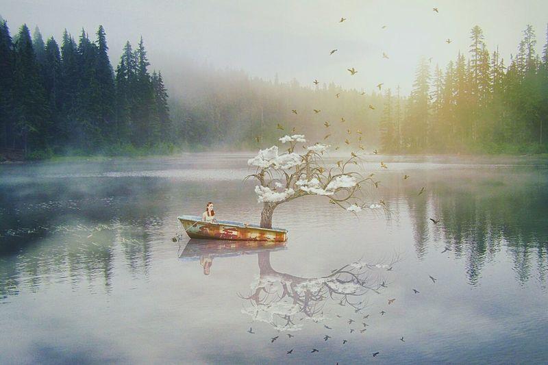 mädchen in boot mit baum auf see Nature