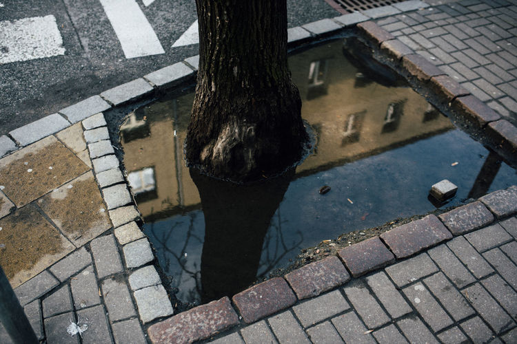 Low section of person standing on footpath in puddle