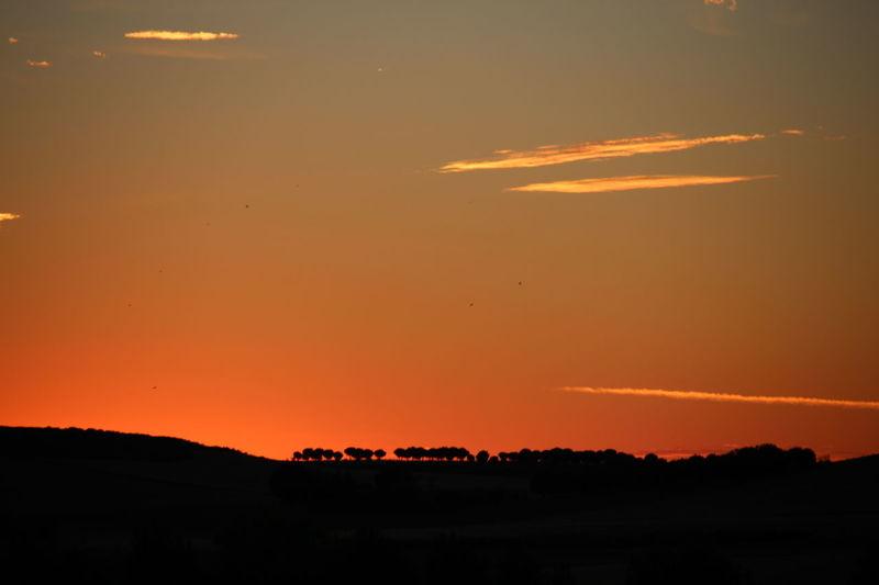 The Week On EyeEm Sunset Orange Color Silhouette Sky Tranquility Cloud - Sky Horizon Multi Colored Zamora, Spain