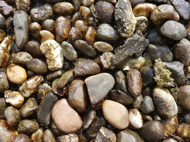 Full Frame Abundance Backgrounds Large Group Of Objects Outdoors No People Day Close-up Nature Freshness Lifestyles S7 Photography Pebbles Pattern Pebbles And Stones Pebbles Pebble High Angle View Coffee Bean Nature Pebble Beach Brown EyeEmNewHere