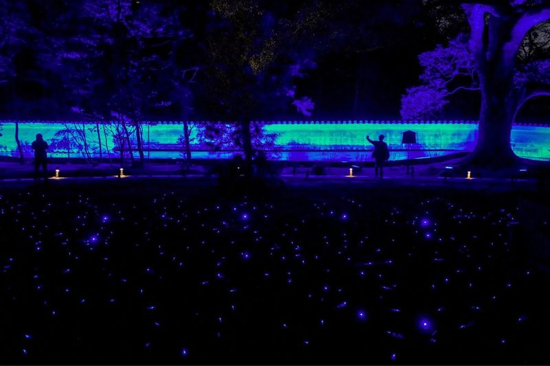 blue lights in Kyoto ( shorei-in ) : A kind of blue Snap a stranger Night lights lowlight Nightphotography silhouette two people 14, March 2018 京都・花灯路 青蓮院門跡 ライカと歩く京都 Kyoto, Rambling With A Leica A Kind Of Blue LEICA Q Typ116 35mm F1.8 Blue Kyoto Night Exceptional Photographs Nightphotography Night Lights Enjoyment Silhouette Large Group Of People Nature Leisure Activity Illuminated Arts Culture And Entertainment Togetherness