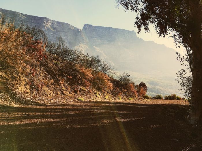 Table Mountain, South Africa. Beauty In Nature Clear Sky Day Landscape Mountain Mountain Range Nature No People Outdoors Road Scenics Sky Sunlight Tranquil Scene Tranquility Tree