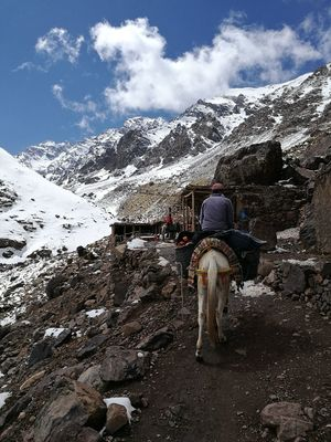Toubkal Morocco Mountain Snow Sky Path Trail Mule Imlil Hiking Trekking Nature Jebel Toubkal Atlas Mountains Maroc Horse EyeEmNewHere