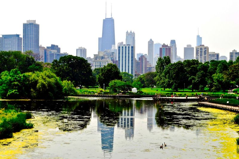 Reflection Of Downtown District In Lincoln Park Zoo Pond