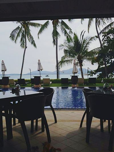Summer 2011 Holiday♡ Enjoying Life Relaxing Luxuryhotel Swimming Pool Beach Lovelovelove Thailand_allshots Wonderful Place