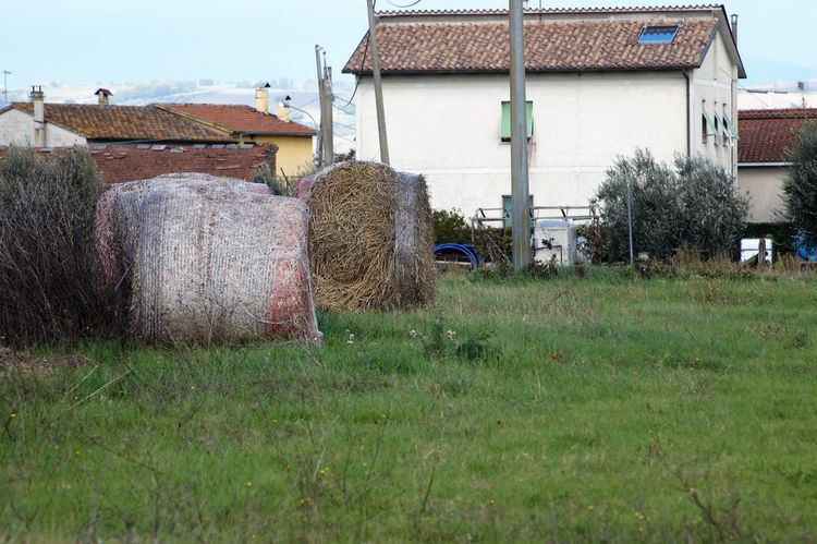 Wwfoasi Alviano🇮🇹 Built Structure Grass Architecture Building Exterior House Field Sky No People Day Agriculture Outdoors Nature Bale  Hay Bale Beauty In Nature Landscape