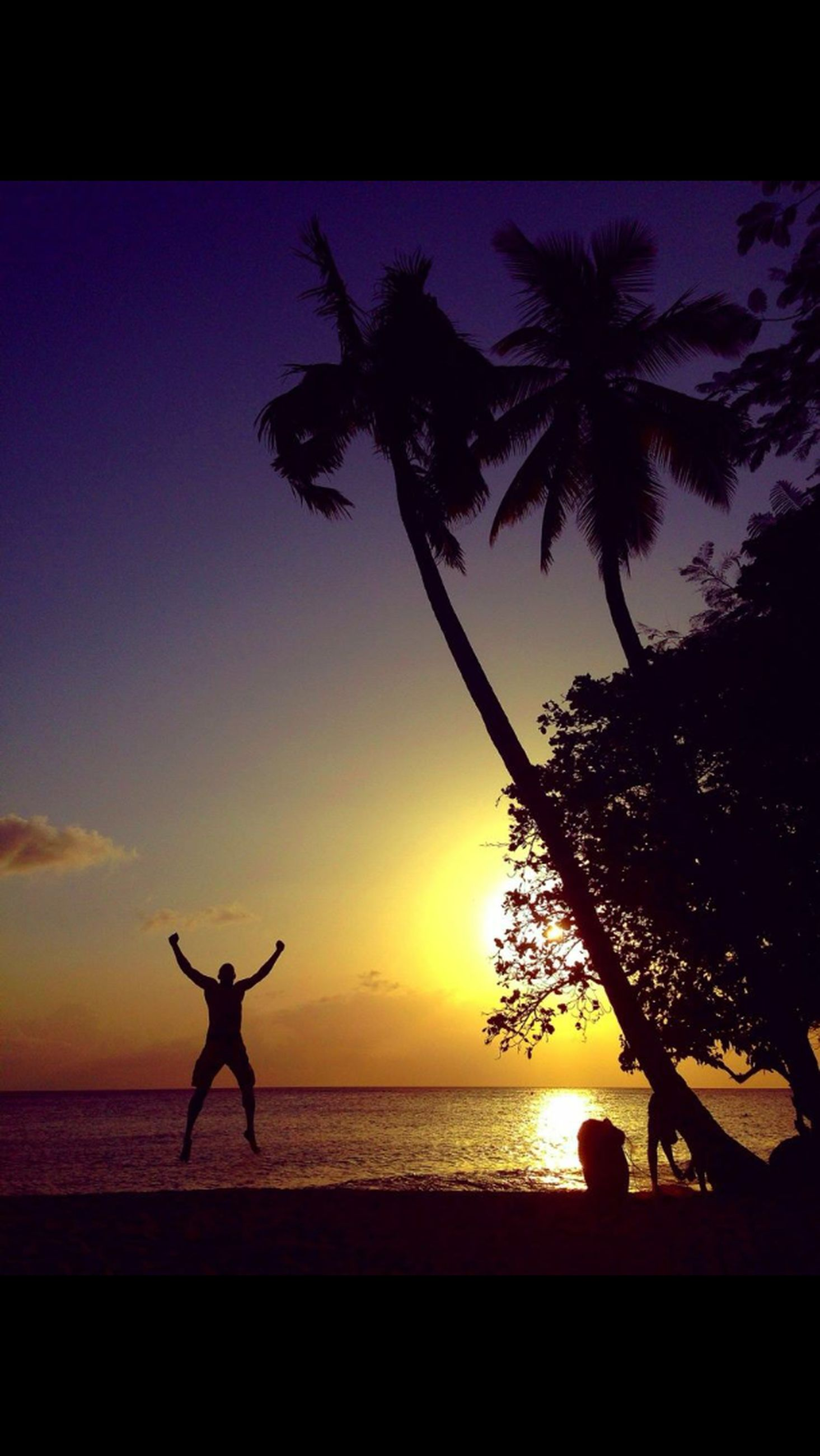sea, horizon over water, silhouette, sunset, water, beach, sky, palm tree, transfer print, tree, auto post production filter, beauty in nature, scenics, tranquility, one person, full length, shore, nature, tranquil scene, sun