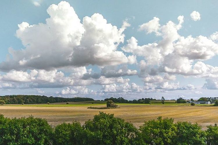 Sometimes the clouds are just begging to be photographed ☁⛅☁ Visitdenmark