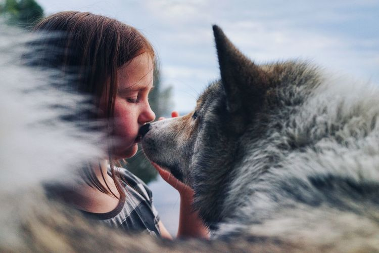 Side view of girl kissing wolf against sky