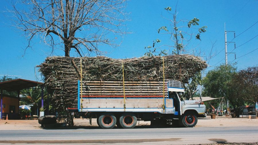 Truck Loaded With Sugar Cane On Road Against Clear Blue Sky