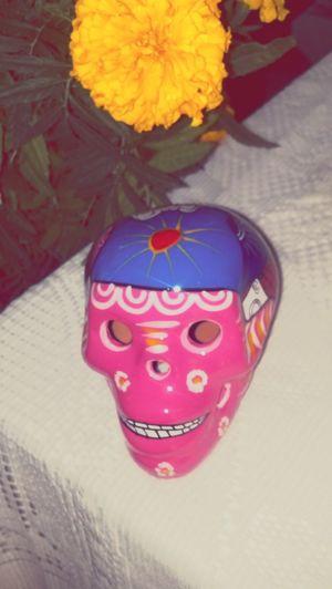 Yasehacercadiademuertos tradicionesmexicanas calaveritas flordemuerto colorestradicionales First Eyeem Photo